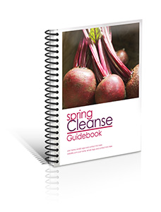 3-D Manual Cover CLEANSE v1